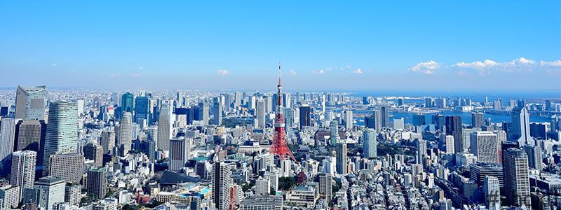 東京タワーと東京のビル群
