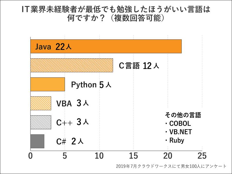 プログラマー・開発系に進みたい方へ 勉強したほうが良い言語